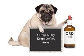 llllLove CBD Oil for Dogs