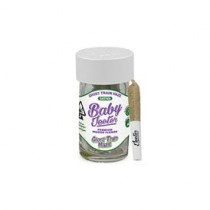 Baby Jeeter Pre-Roll Infused Flavor: Ghost Train Haze, Five .50g Joints 2.5g gram (Sativa) 26.82% THC