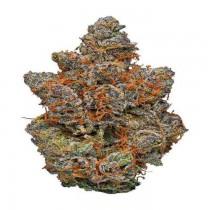 GELATO (EXCLUSIVE) 3.5 Grams HYBRID THC 29.49% CBD .03%
