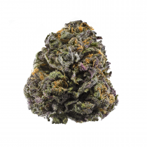 Granddaddy Purple (Top Shelf) Indica 3.5 Grams THC 26.1 % CBD 0.07%