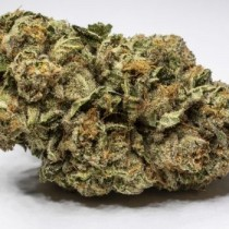Hashbar OG (EXCLUSIVE) 3.5 Grams Indica THC 27.19% CBD .37%