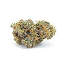 Cookies Brand Gary Payton (EXCLUSIVE) Indica 3.5 Grams THC 25.7 % CBD 0.13%